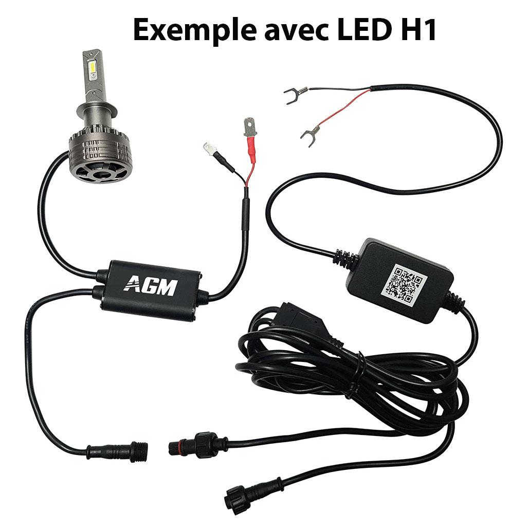 Kit Ampoules LED H16 DEMON RGB