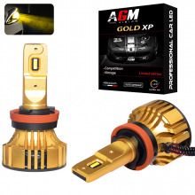 Kit Ampoules LED H9 GOLD XP